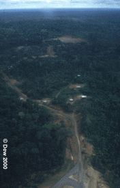 Amazon Oil Road Yasuni
