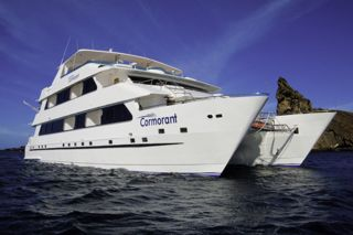 Cormorant Evolution Catamaran